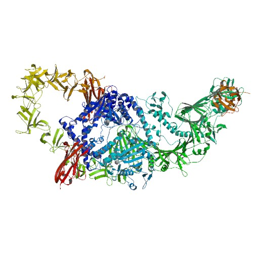 Structure of the full-length Clostridium difficile toxin B in complex with 3 VHHs